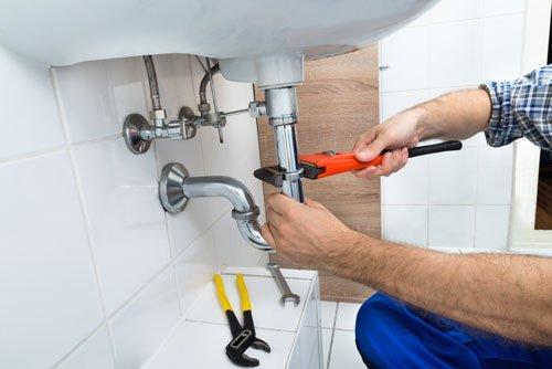 un idraulico con un pappagallo rosso in mano dei tubi mentre sistema un lavandino