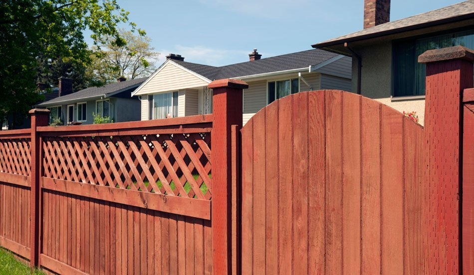 Tinted garden fence and gate with trellis detail at the top