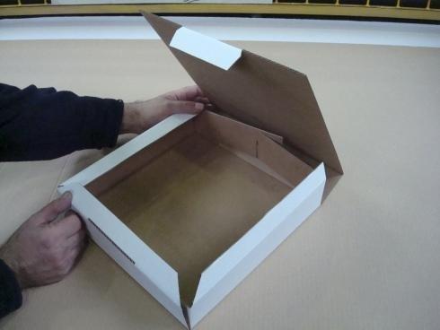 scatole per alimenti