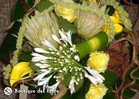 fiori dal mondo