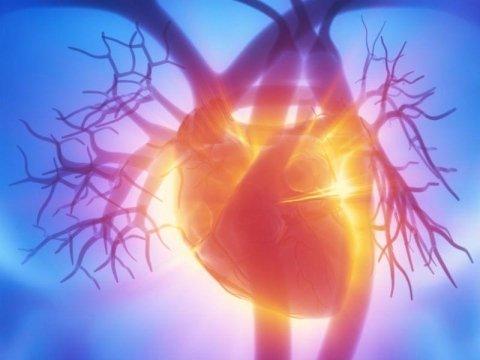 Cardiologo Specializzato