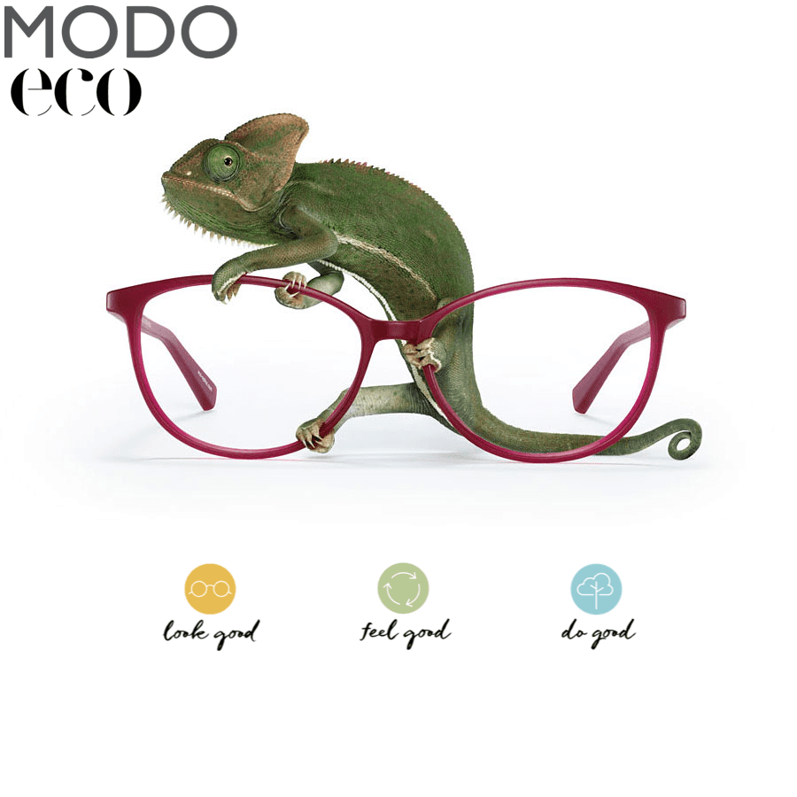 Modo eco eyewear fashion is available at Precision Vision Edmond