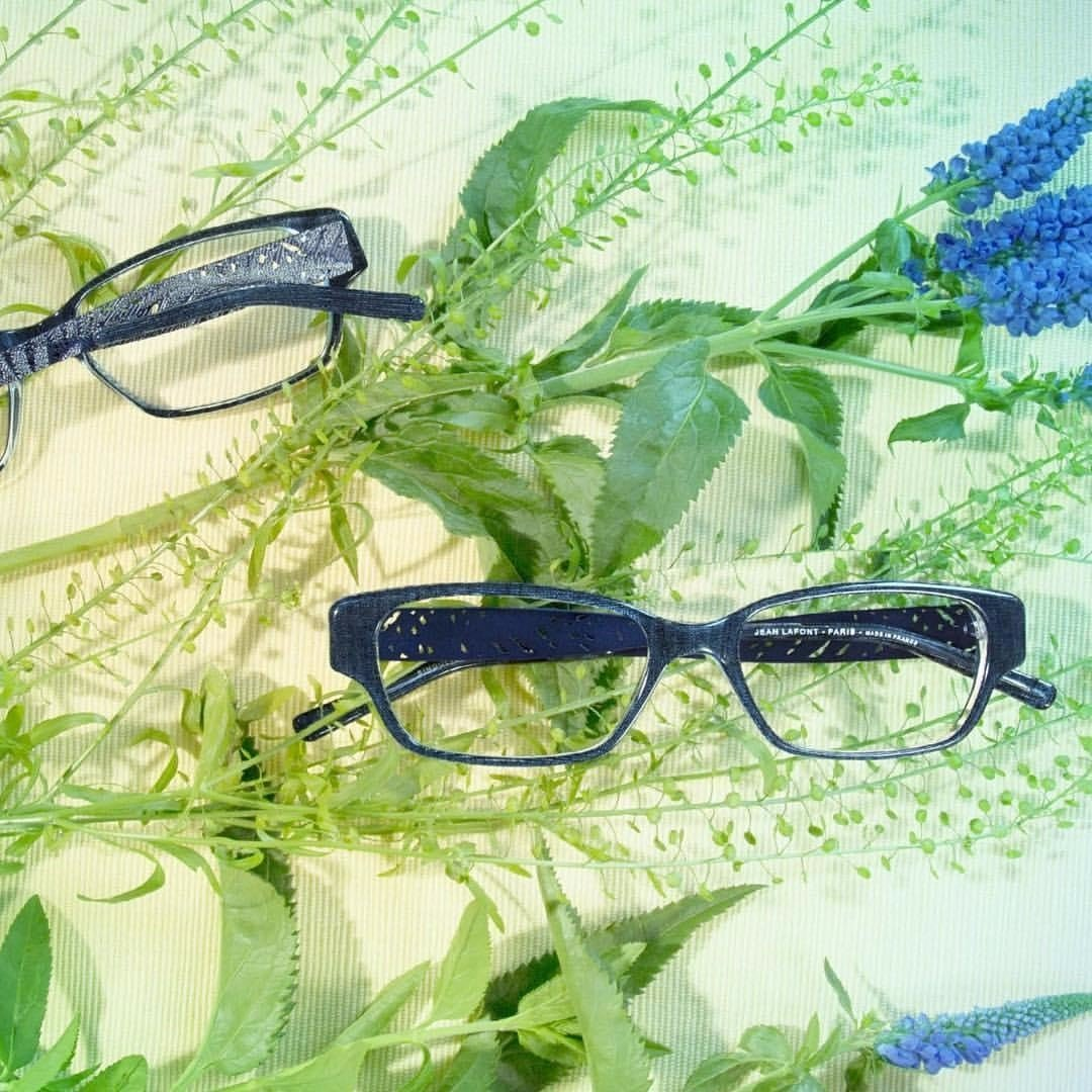 photo of eyeglass frames and foliage
