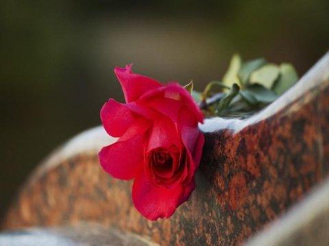 Servizi di cremazione Bra