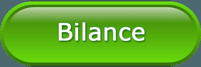vendita bilance commerciali