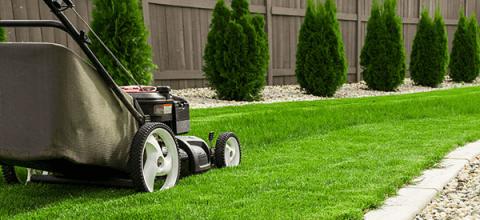 Noleggio attrezzature per il giardinaggio