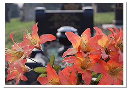 Orange lilies placed on memorial