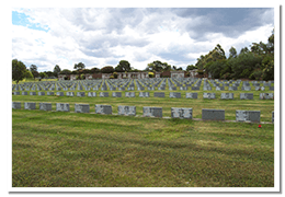 Wholesale cemetery supply & services