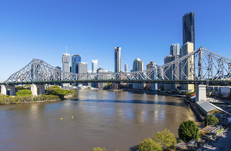 kiwi tree lopping brisbane bridge view