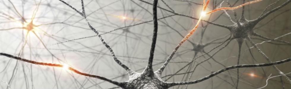 cura neuropatie bari