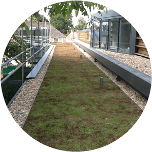 A green roof designed and built by SEECO Roofing