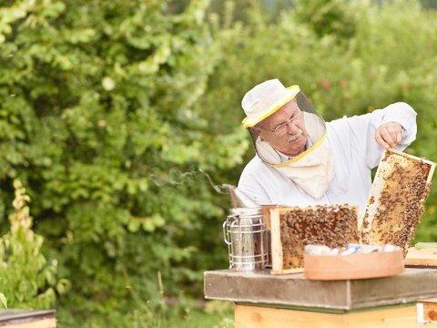 Vendita abbigliamento per apicoltura