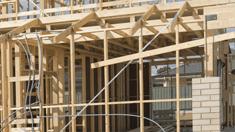 legname-per-edilizia