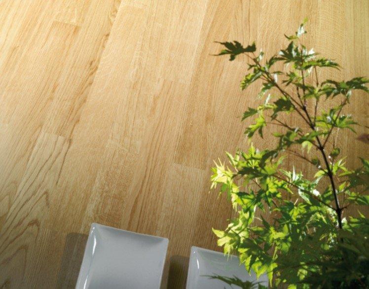 Un parquet in legno con una pianta di fianco