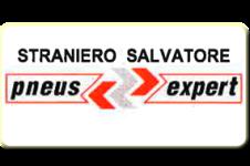 logo straniero salvatore