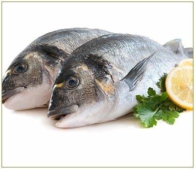 commercio pesce mare