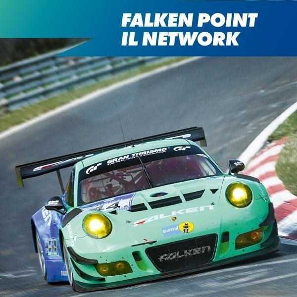 Network Falken Point