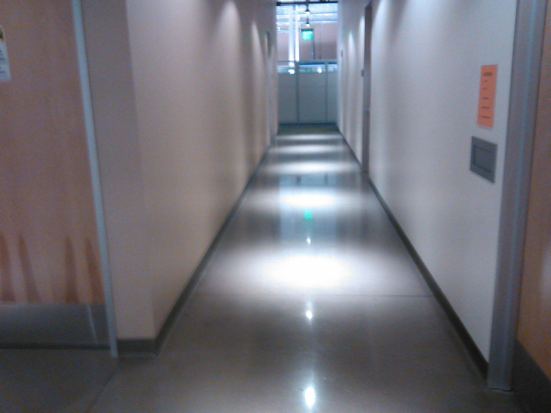 Expert floor cleaning service