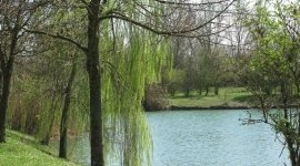 oasi naturale, tranquillità, verde