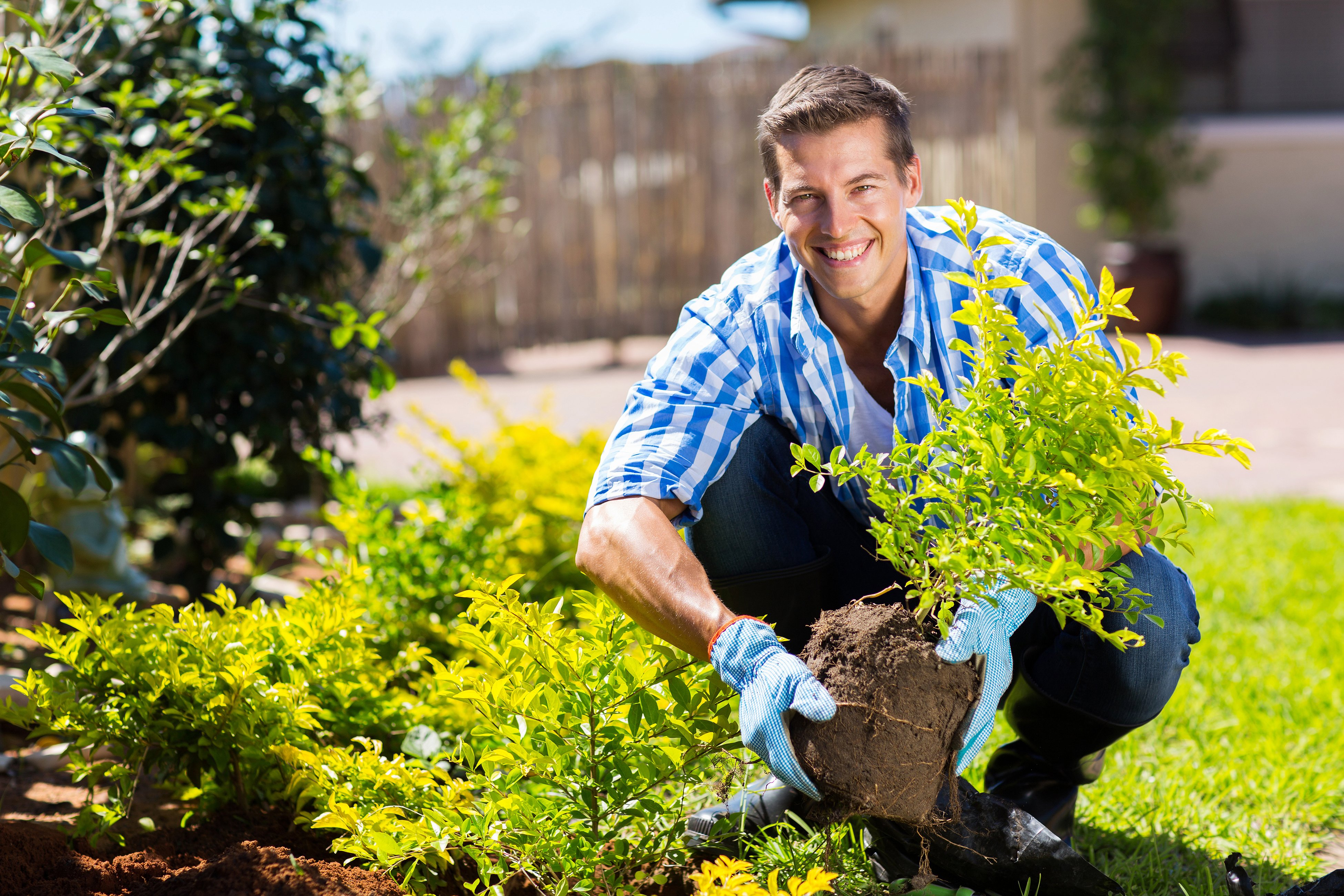 Man planting a garden