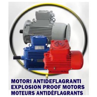 motori antideflagranti