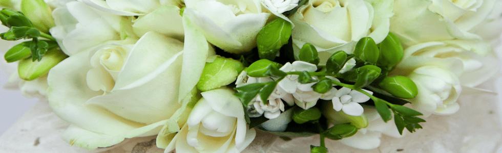 fiorista nesa