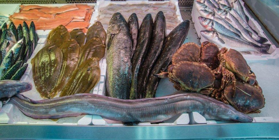 Dei granchi, un anguilla e altro pesce di mare