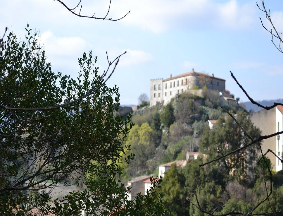 alberi e castello in lontananza