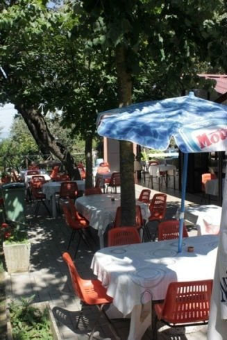 dei tavoli e delle sedie , un ombrellone e degli alberi