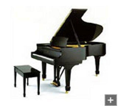 Noleggio pianoforte a coda Steinway B-211
