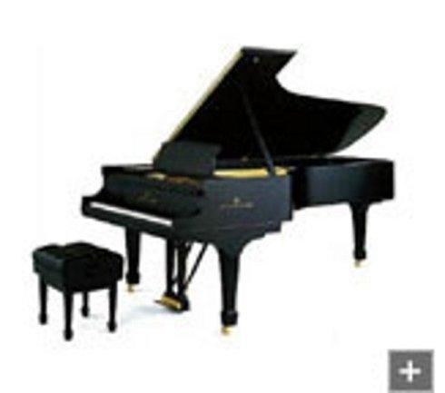 Noleggio pianoforte Steinway grancoda d-274