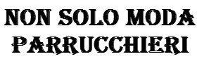 NON SOLO MODA PARRUCCHIERI-LOGO