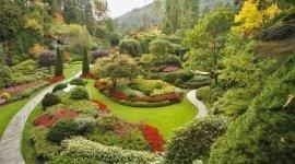 manutenzione giardini, abbattimento alberi, abbattimento pioppi