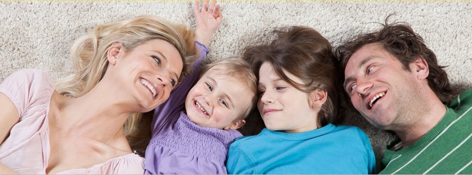 Professional Carpet Amp Furniture Cleaning Services In