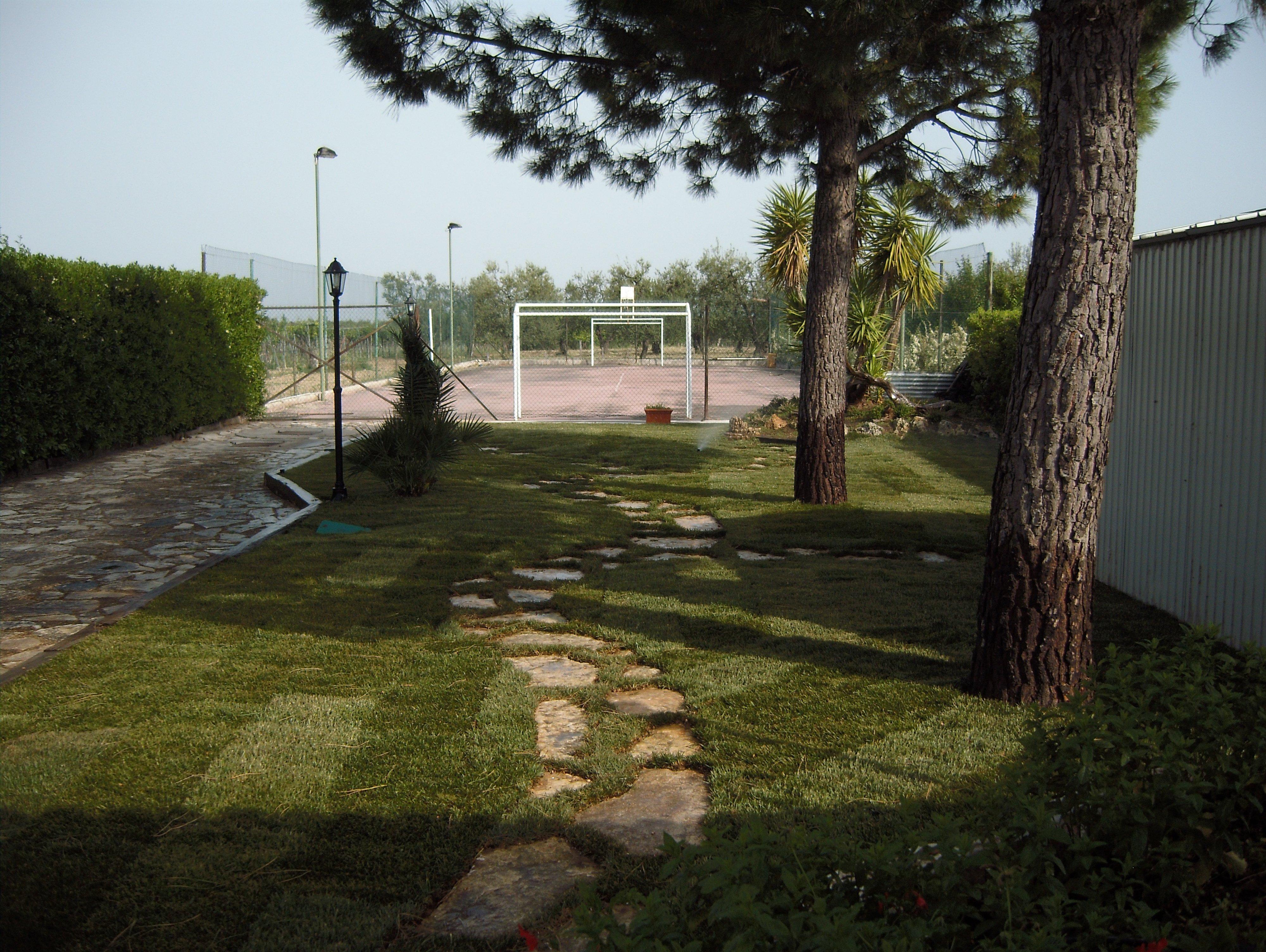 Giardino con viottolo e alberi