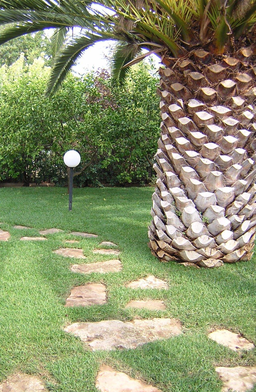 Viottolo con palma e lampione in un giardino