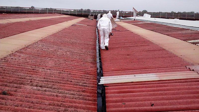 Operai a lavoro per la rimozione dell'amianto dalle coperture di capannoni industriali