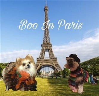 Pom in Paris