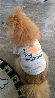 dog mummy shirt