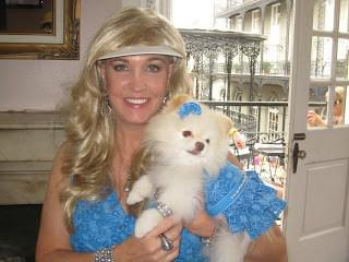 Chloe the Pomeranian in blue dress