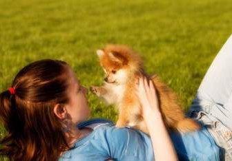 child holding Pomeranian
