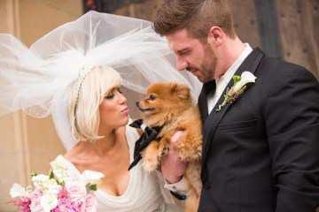 Pomeranian at wedding