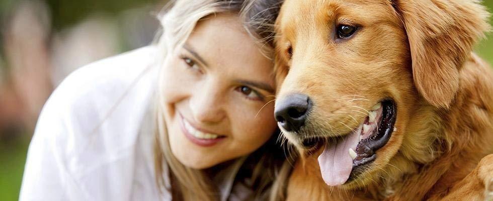 chirurgia animali domestici