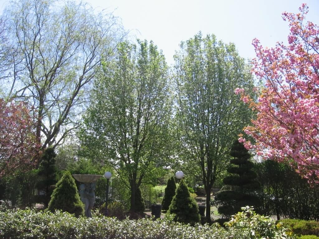Garden Designer Southampton, NY