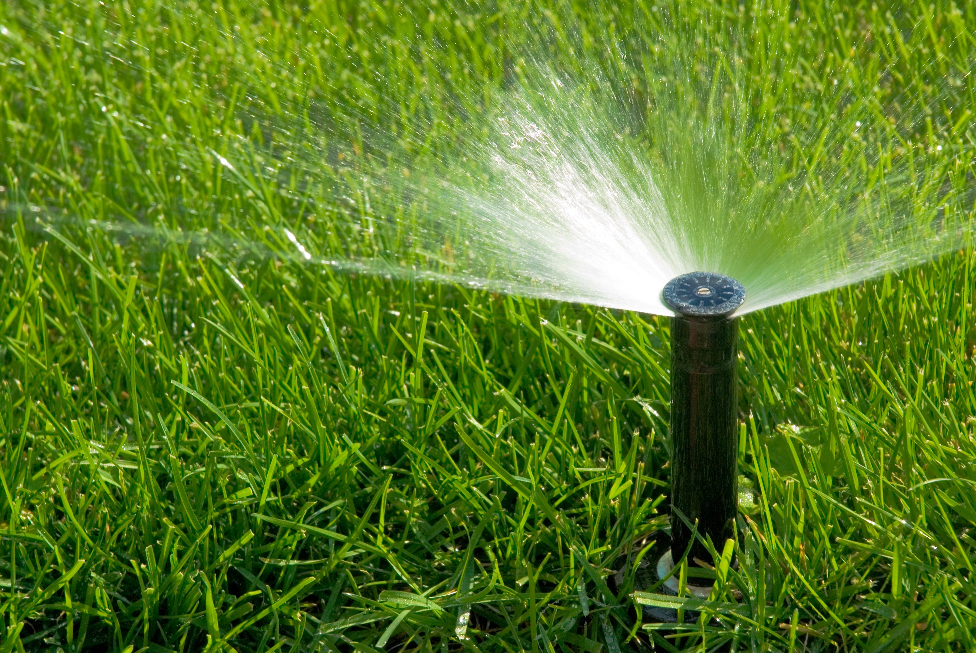 image showing a sprinkler head spraying water correctly