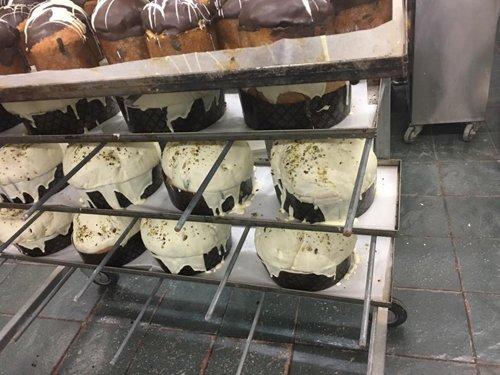 Ripiani con panettoni in lavorazione