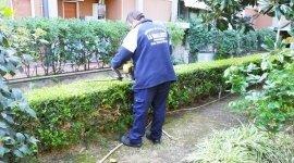pulizia e giardinaggio