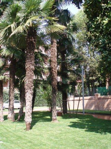 giardino per studentesse