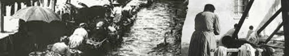 LAVANDERIA ACQUA E SAPONE - logo