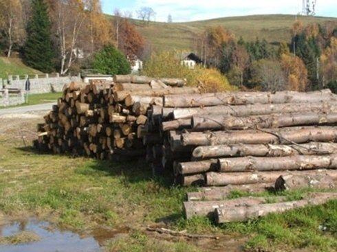 boschi, legna per stufe